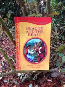 blog.beautybeastbook
