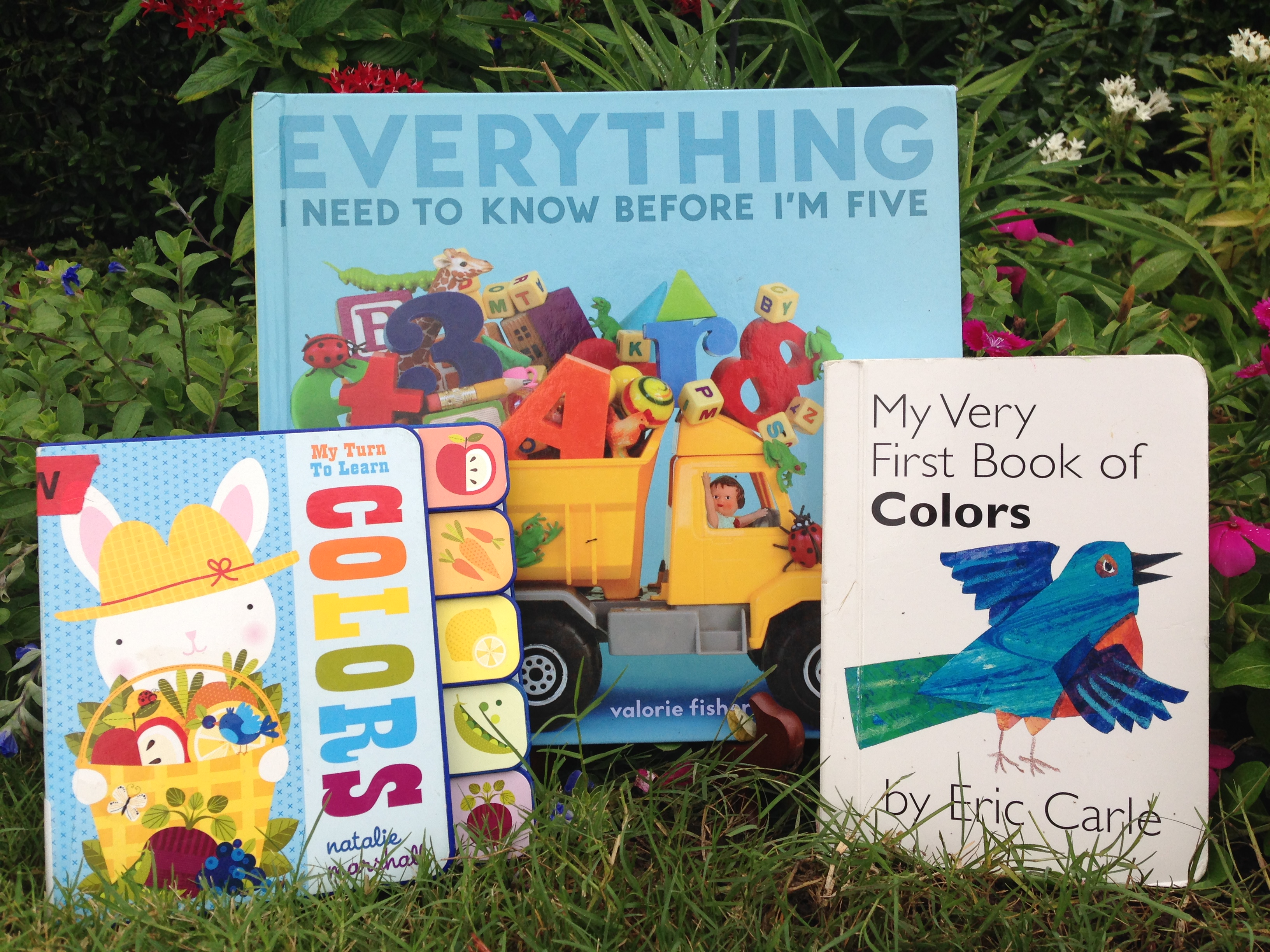 Kidsbook Clip: 12 Titles for Teaching Colors and ABCs | kidsbook friends
